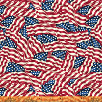 Windham Fabrics - 108 inch Quilt Back - Packed United States Flags by Whistler Studios
