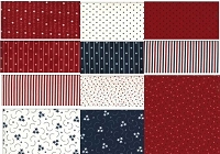 American Gathering Fat Quarter Bundle