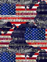 Land of the Free - We the People - star spangled banner,